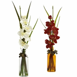 "21"" Phalaenopsis w/Colored Jar (Set of 2)"
