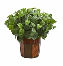 Pothos Artificial Plant in Decorative Planter -