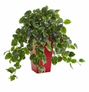 Pothos Artificial Plant in Red Planter UV Resistant (Indoor/Outdoor) -