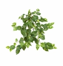 "24"" Silk Pothos Hanging Bush Plant (Set of 3) - Non Potted"