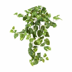 "26"" Artificial Pothos Hanging Bush Plant (Set of 3) - Non Potted"