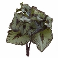 "8"" Rex Begonia Artificial Bush (Set of 12) - Non Potted"