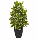 "50"" Artificial Rubber Plant with Black Wash Planter"