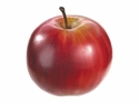 "Set of 12 - Fake 3"" Weighted Red Apple"