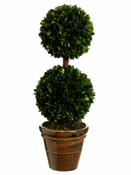 """Set of 2 - 18.5"""" Preserved Boxwood Double Ball Topiaries"""