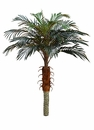 Set of 2 - 4' Artificial Phoenix Silk Palm Trees non potted