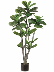 Set of 2 - 4' Fiddle Leaf Fig Trees
