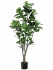 Set of 2 - 6' Fiddle Leaf Fig Trees