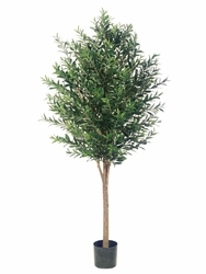 Set of 2 - 6' Silk Olive Trees