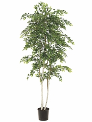 Set of 2 - 7 ft Silk Sherman Birch Trees - 2748 Leaves and Hand Painted White Trunks - Potted