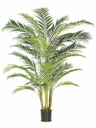 Set of 2 - 7' Silk Areca Palm Trees - Potted