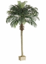 Set of 2 - 8' Phoenix Silk Palm Trees in Plastic Pots