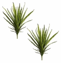 Set of 2 - Artificial Agave Cactus Plants