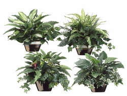 "18"" - Set of 4 Styles Silk Greenery Assortment in Ceramic Pots"