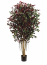 Set of 2 - 5' Silk Ficus Retusa Trees - 2,820 Leaves each