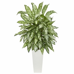 "43"" Silver Queen Artificial Plant in White Tower Planter"