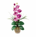 "21"" Single Stem Phalaenopsis Silk Orchid Arrangement"