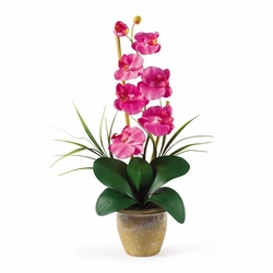 "21"" Single Stem Phalaenopsis Silk Orchid Arrangement - Dark Pink"
