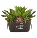 Succulent Garden in Wood Planter -