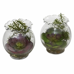 "6"" Artificial Succulent Arrangements with Fluted Vase (Set of 2)"