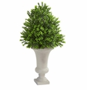 Sweet Grass Artificial Plant in Urn  -