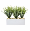 "12"" Artificial Vanilla Grass in Rectangular Planter Arrangement"