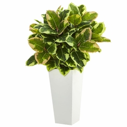 "32"" Variegated Rubber Artificial Plant in White Tower Planter  (Real Touch)"