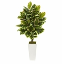 4' Variegated Rubber Leaf Artificial Plant in White Tower Vase