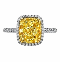 'Teresa' Double Prong Halo Engagement Ring for Fancy Yellow Diamond