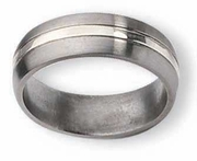 Titanium Ring  Silver Inlay High and Matte Finish in 7mm