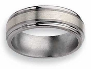 Titanium Ring  Silver Inlay Matte and High Polish Finish in 8mm