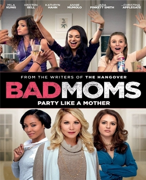 Bad Moms DVD  (USED)