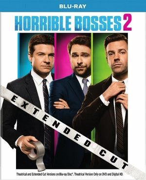Horrible Bosses 2 Blu-ray Single Disc
