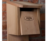 12 Cedar Birdhouse Kit