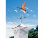 Polished Copper Heron Weathervane