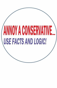 Annoy A Conservative Magnet