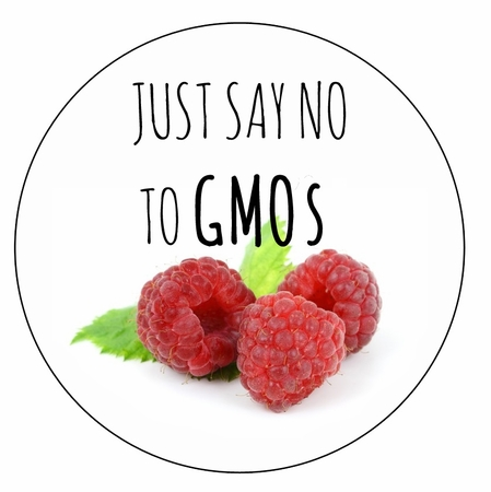 """Just Say No to GMOs Magnet - 3"""""""