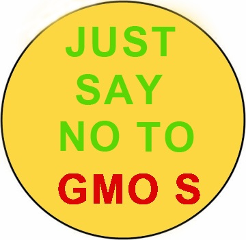 """Just Say No To GMOS Yellow Magnet - 3"""""""