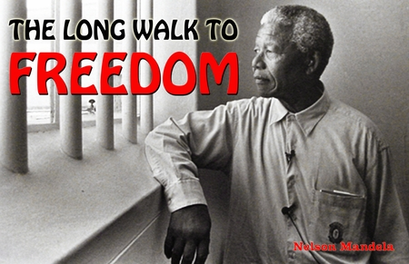 Nelson Mandela Long Walk to Freedom Poster 11 x 17""