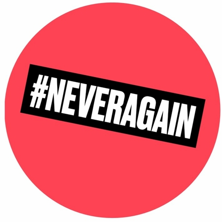 #Never Again Pin