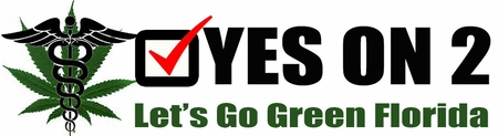 VOTE YES ON 2 BUMPER STICKER - FOR MEDICAL MARIJUANA IN FLORIDA!
