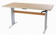 Accella Computer Workstation & Activity Table