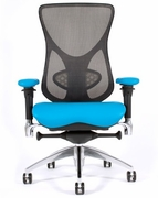 Aircelli Ergonomic High Mesh Back Chair