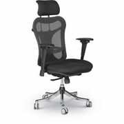 Ergo Ex - Ergonomic Executive Office Chair