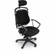 Posture Perfect Ergonomic Office Chair