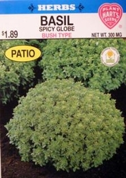 Herb Basil Spicy Globe