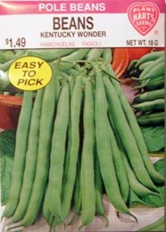 Bean Kentucky Wonder