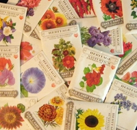 Hart Seed Heritage Flower Collection