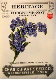 Heritage Forget Me Not