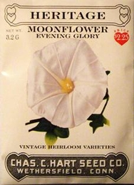 Heritage Moonflower Evening Glory